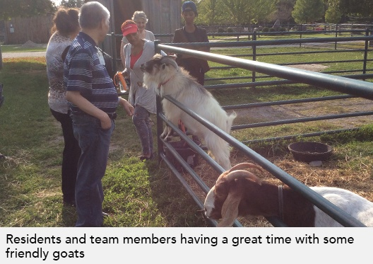 Residents and staff look at goats through a fence